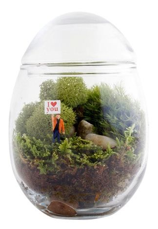 Table Decorations Terrariums With Wood Moss And Mini Figurines