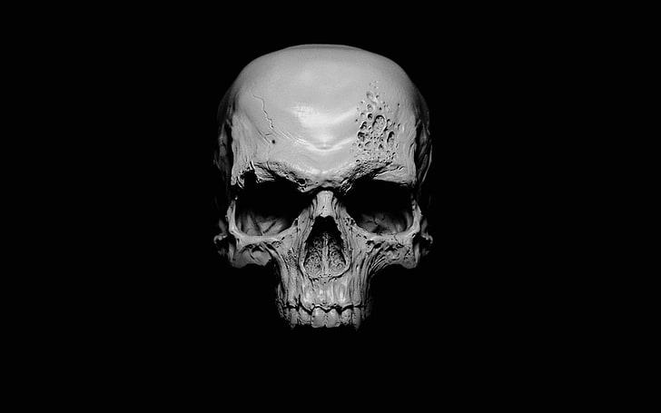 1920x1081px Free Download Hd Wallpaper White Skull Illustration White Human Skull Black Black Backg Skull Illustration Skull Black Background Wallpaper
