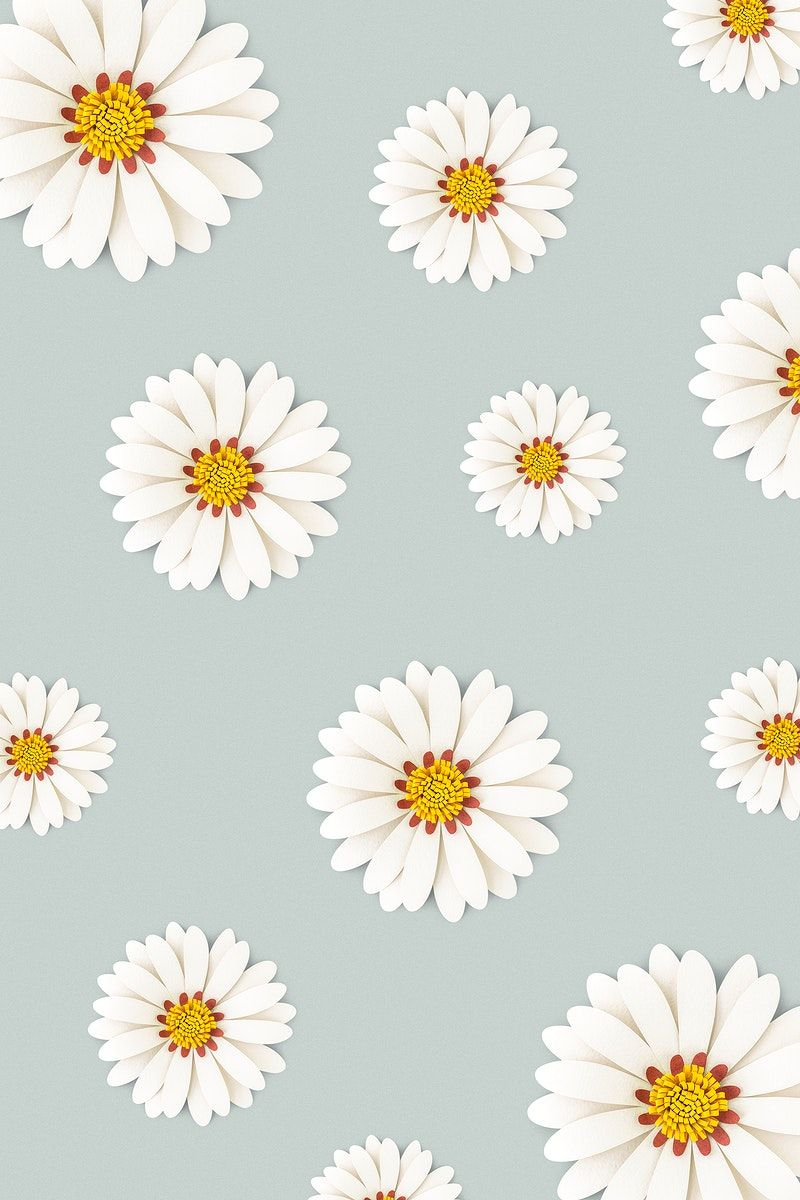 Download premium psd / image of White daisy flower on light blue background by Minty about daisy, paper sticker, daisy pattern, daisy flower, and daisy patterned 1202450