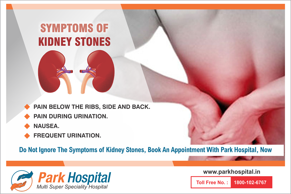symptoms of kidney stones - pain below the ribs, side and back, Human Body