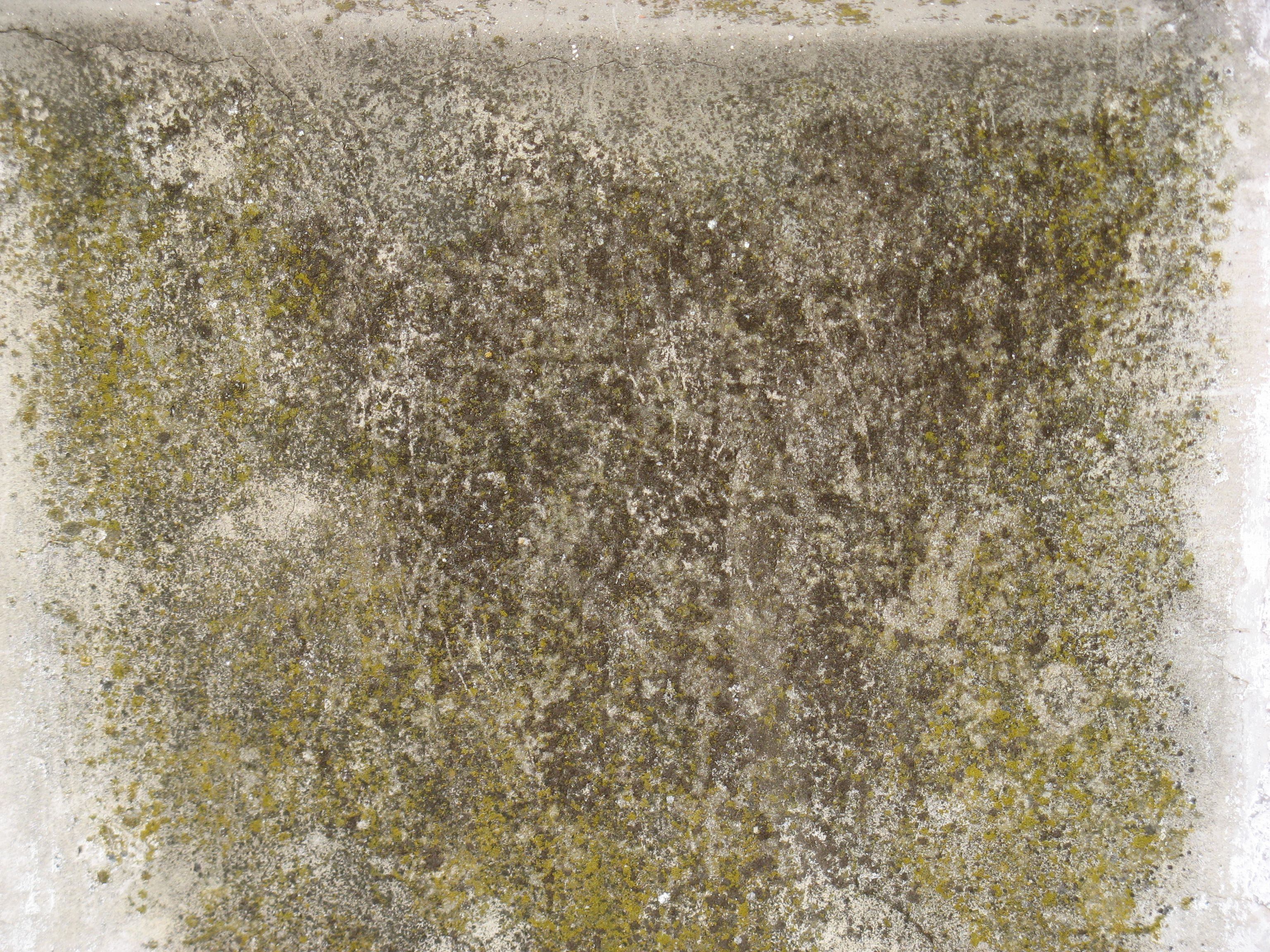 High walls free concrete grunge texture dirt wall for Removing dirt stains from concrete