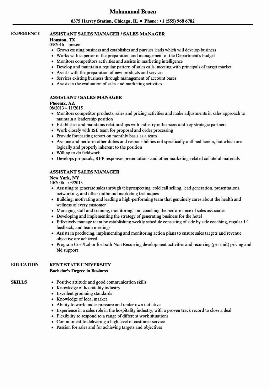 Sales assistant Job Description Resume Best Of assistant