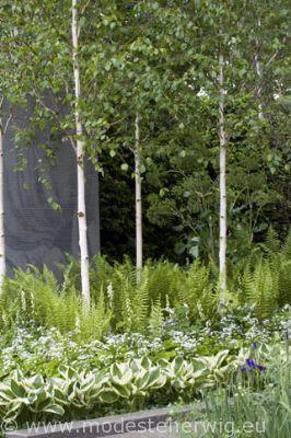 Mg Projekt Wymarzone Projekty Domów Roof Garden Design Mediterranean Garden Design Garden Design