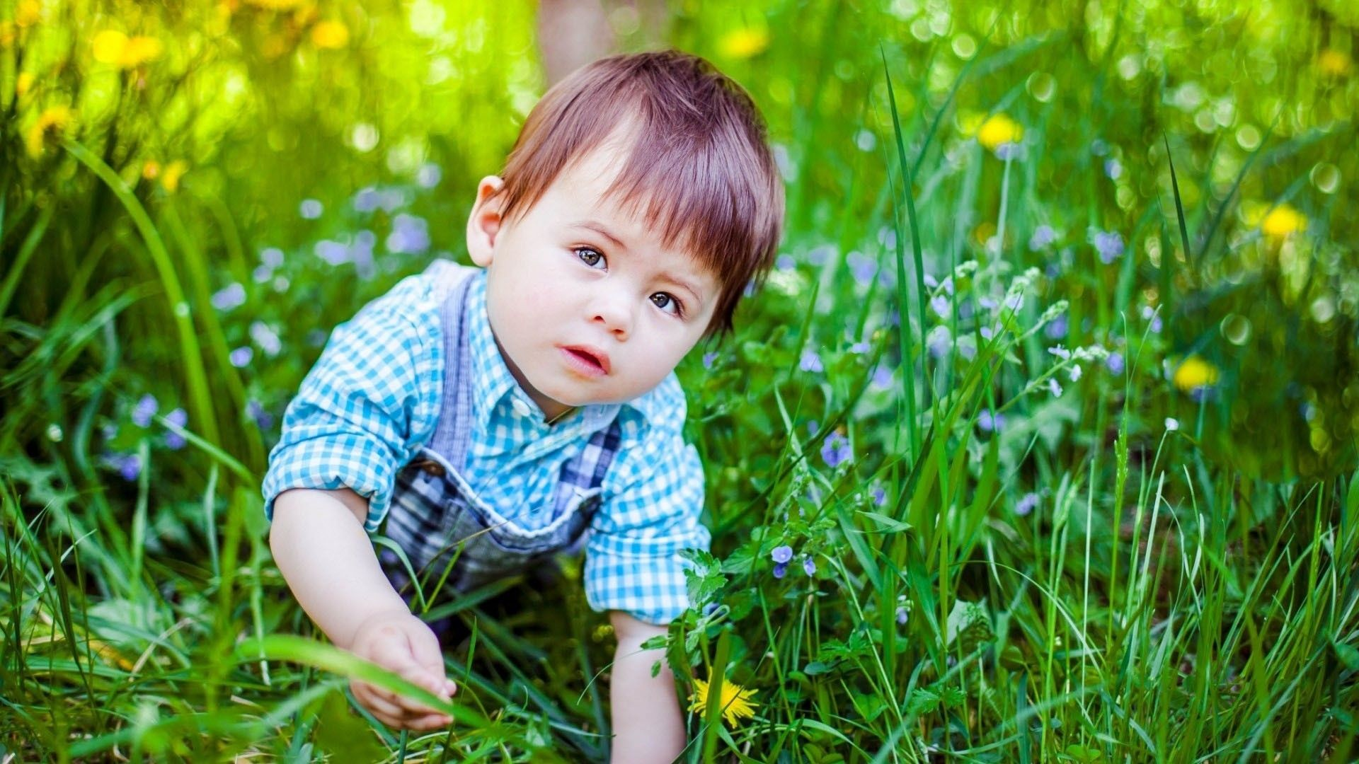 cute boy pic beautiful cute boy wallpapers backgrounds | hd