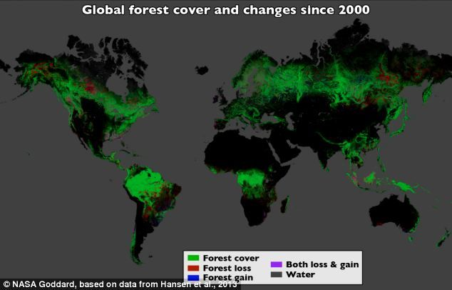 Google maps reveal region wise and global deforestation rates nasa google maps reveal region wise and global deforestation rates click on image or gumiabroncs Image collections