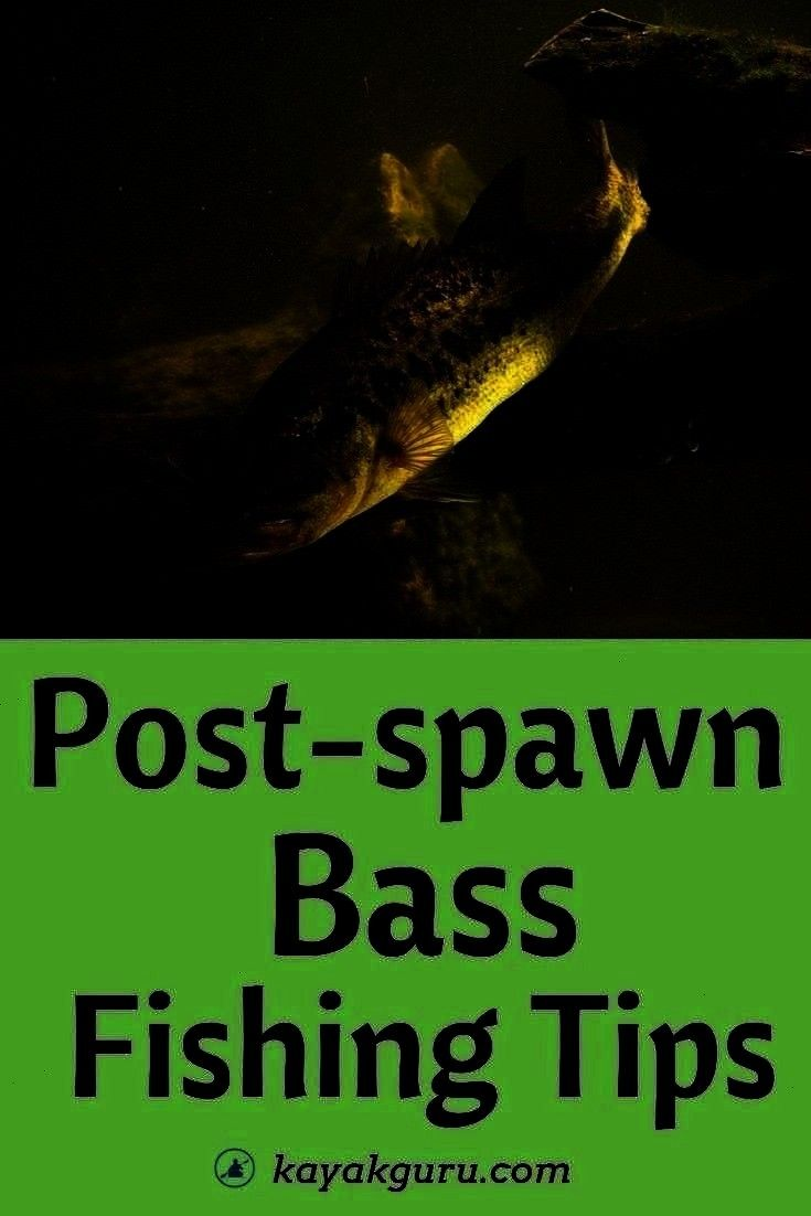Lures And Fish Locations Explained  Post Spawn Bass Fishing Tips  Baits Lures And Fish Locations Explained Post Spawn Bass Fishing Tips  Baits Lures And Fish Locations Ex...