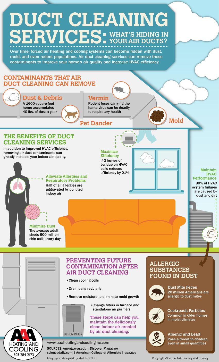 Duct Cleaning Services What's Hiding in Your Air Ducts