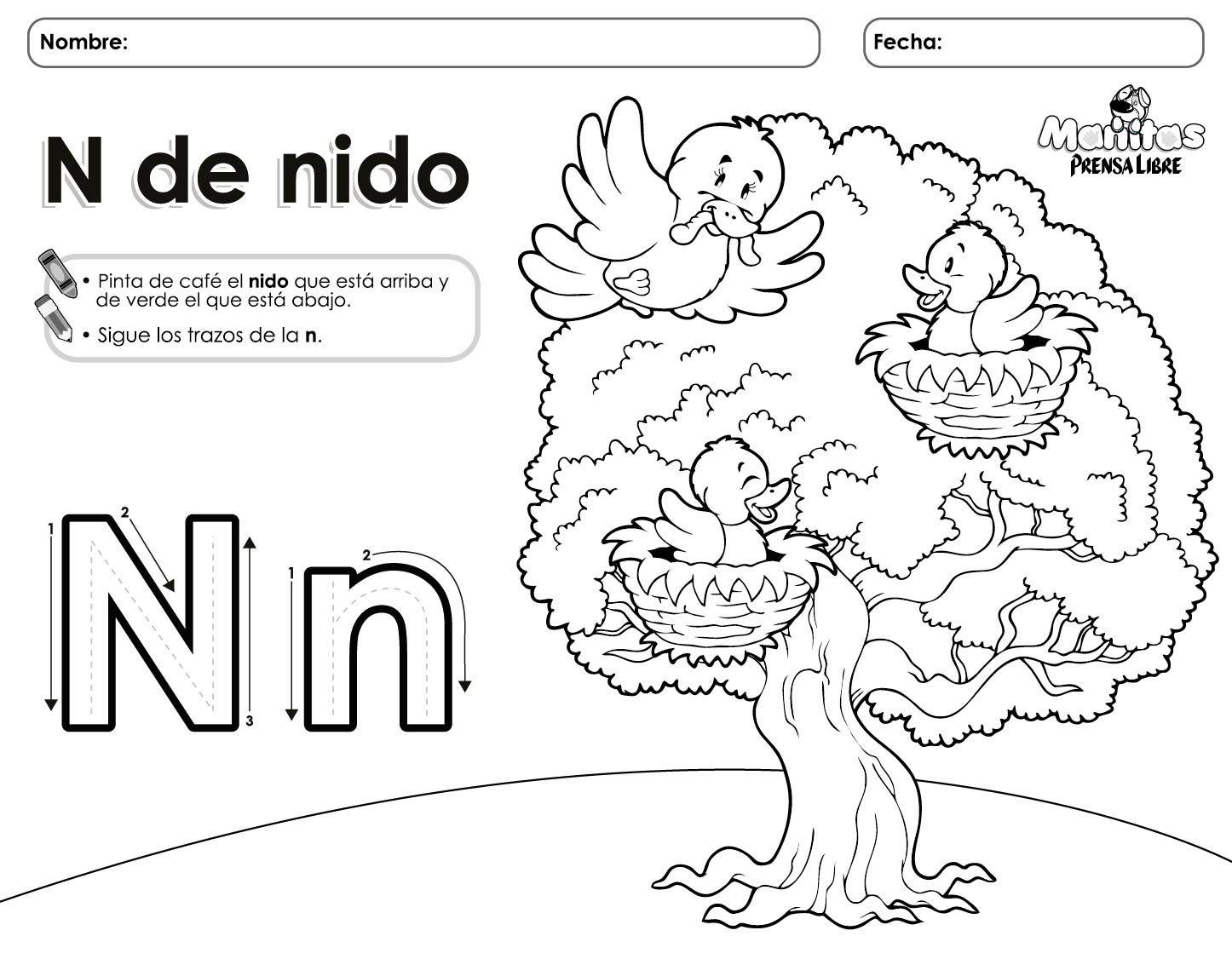 La letra N Actividades de letras Aprender las letras y Primeros grados