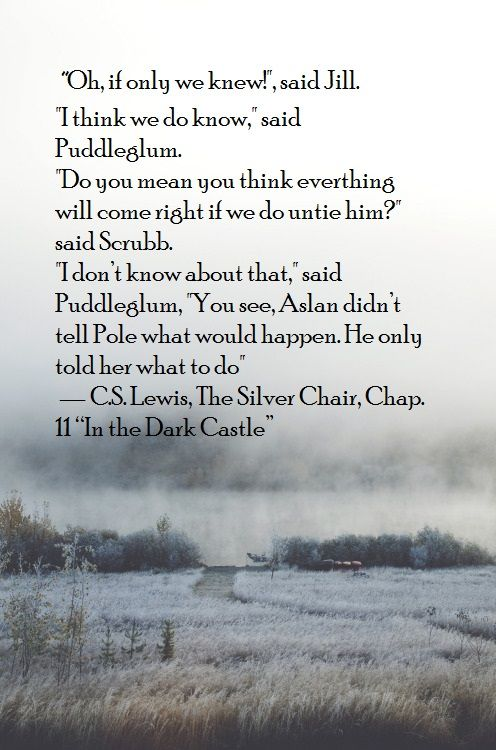 Narnia The Silver Chair Quote Narnia Quotes Chair Quotes Fandom Quotes