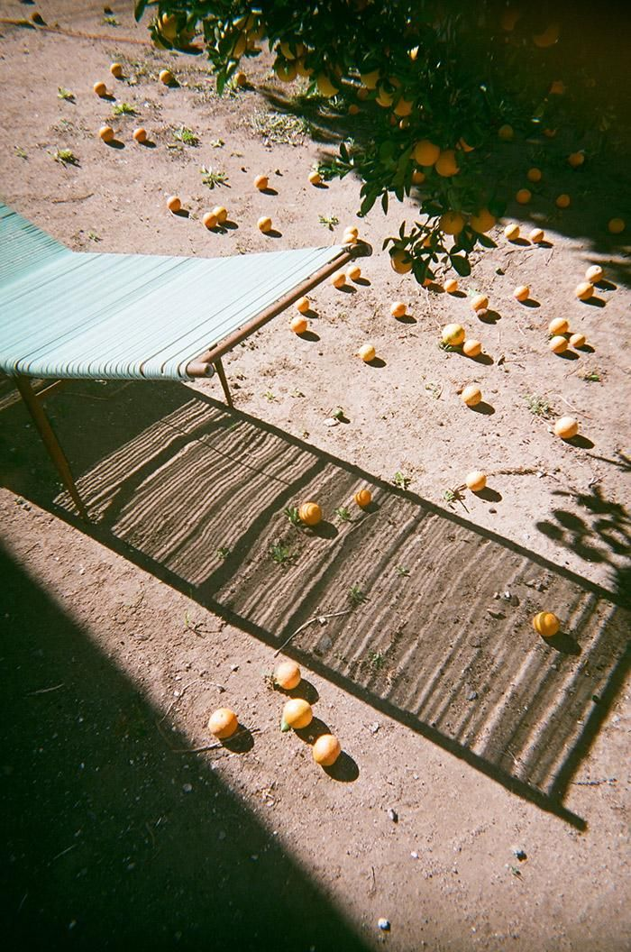 Here\'s What Happens When Pro Photographers Shoot on Disposable ...