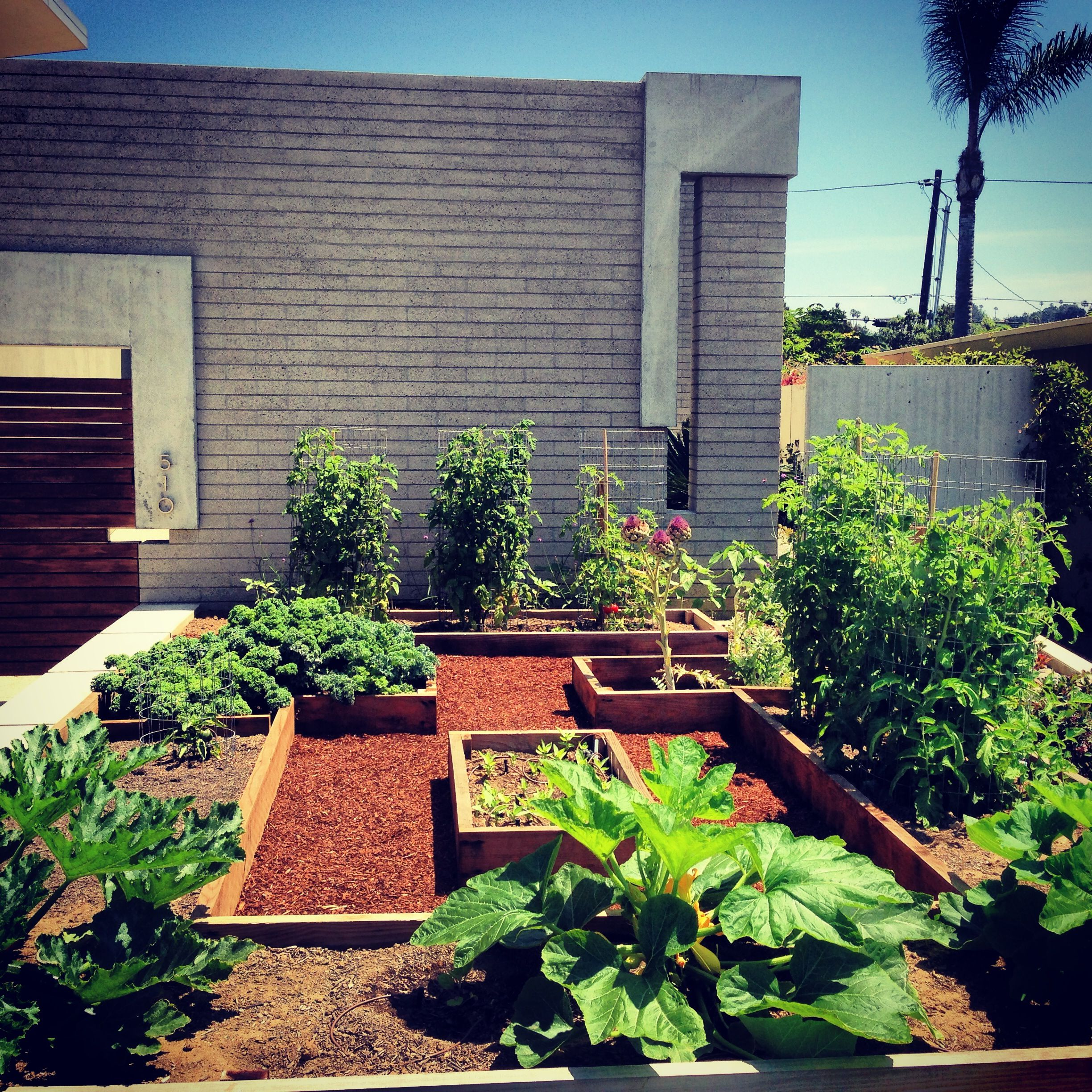 Grow Food Not Lawns Contemporary Stylish And Delicious 400 x 300