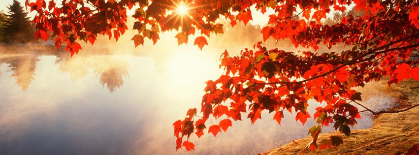 Fall Autumn Foggy Lake Sunrise Free Facebook Covers