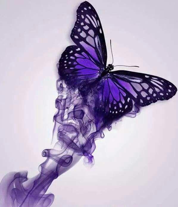 Purple butterfly butterflies pinterest butterfly for Purple butterfly tattoo