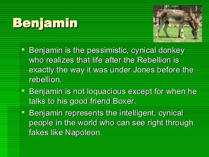Animal Farm Characters Animal Farm Orwell Farm Animals Animal Farm George Orwell