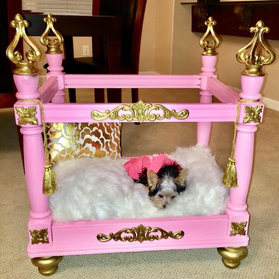 Pin by Cece Rivera on Teacup shih tzu Dog bed, How to