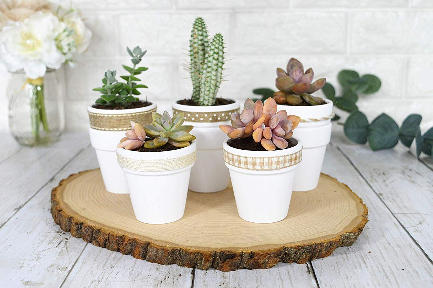 Amazon Com My Urban Crafts 40 Pcs 2 5 Mini Clay Pots Small Terracotta Pots Ceramic Pottery Planters Cactu Succulent Pots Terracotta Flower Pots Flower Pots