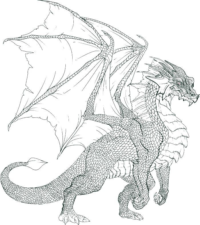 hard coloring pages of dragons 03 - Dragon Coloring Books