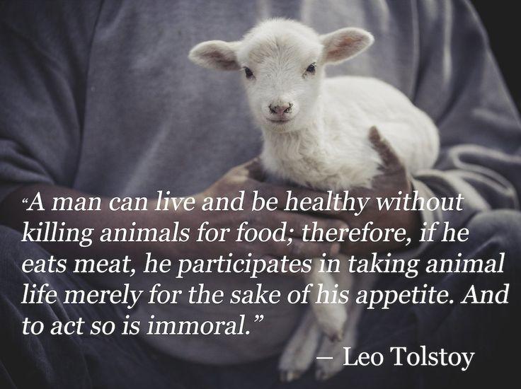 Ein Mensch kann leben und gesund sein ohne Tiere für Nahrung zu töten. Wenn j #Vegetarian #vegetarianquotes