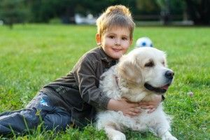 DIY green and healthy tips for your pets