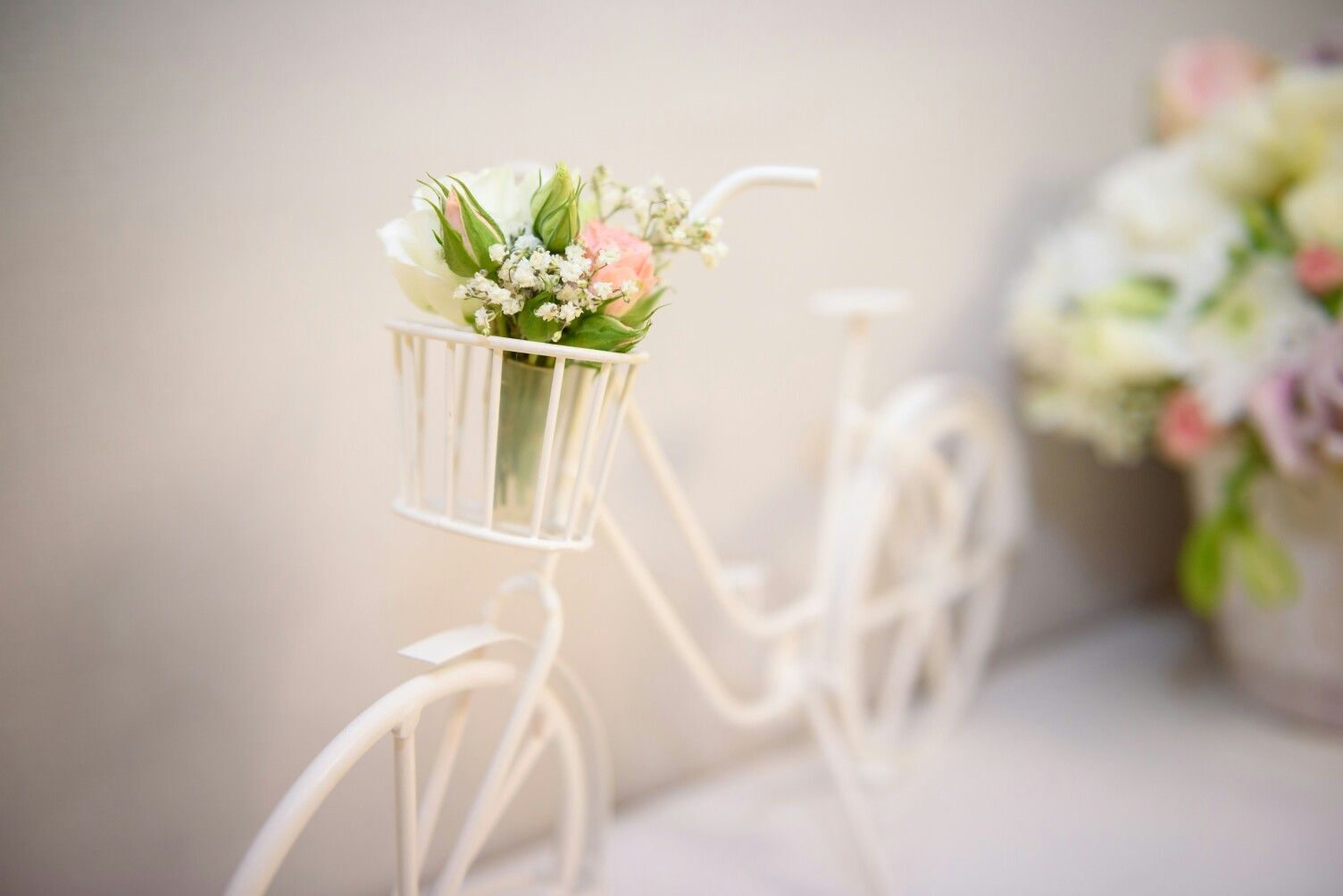 hochzeit rosa taupe deko fahrrad blume our wedding. Black Bedroom Furniture Sets. Home Design Ideas