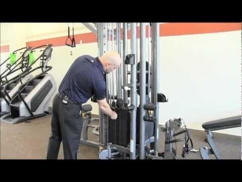 Gym Equipment Basics Strength No Equipment Workout Gym Gym Equipment