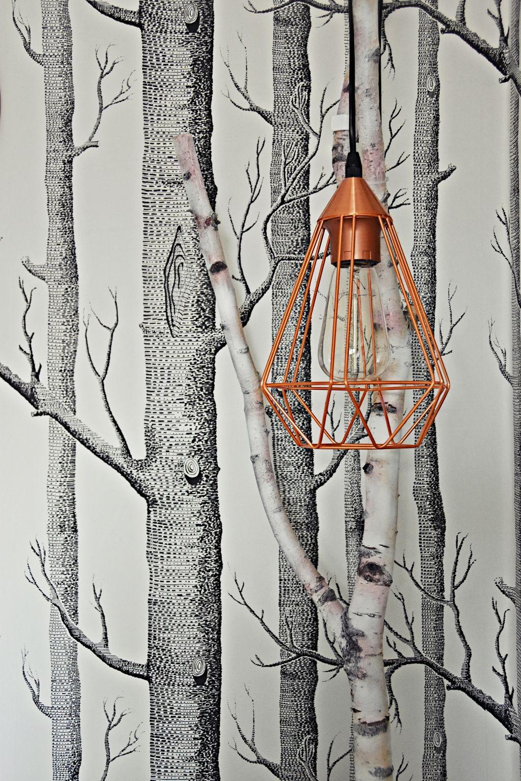 DIY Lampe Aus Einem Birkenast