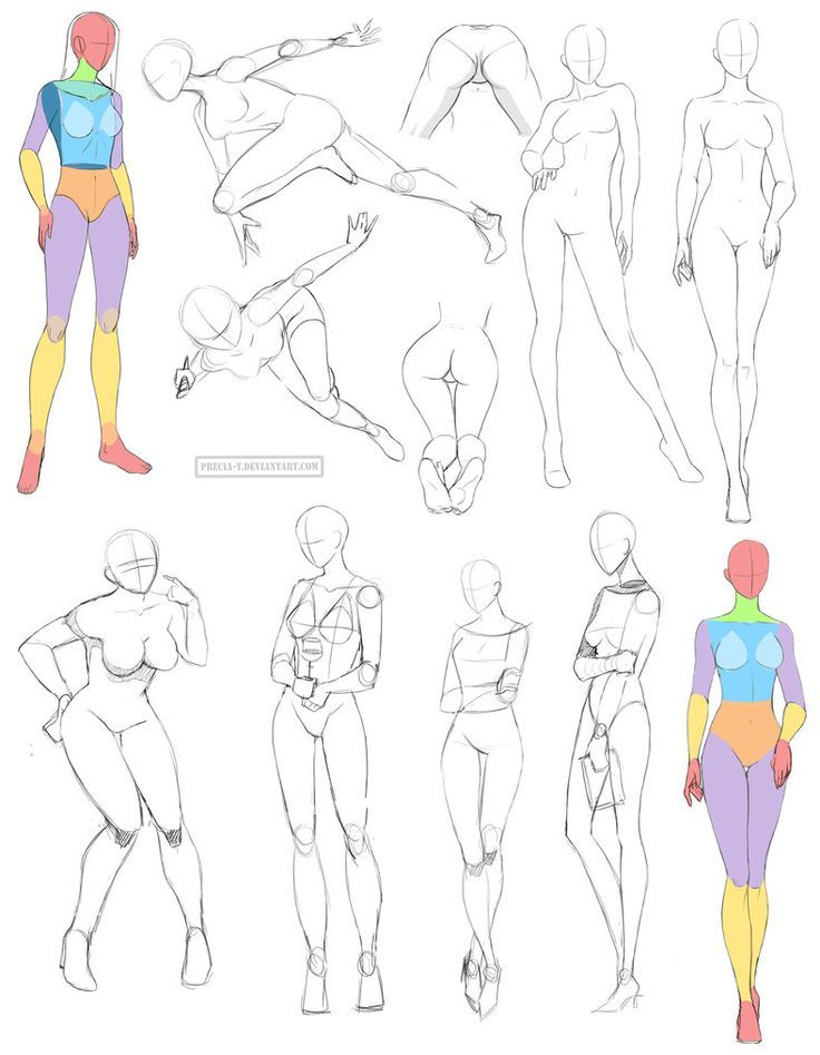 Female anatomy 8 by Precia-T on deviantART | Art Figure Tutorials ...