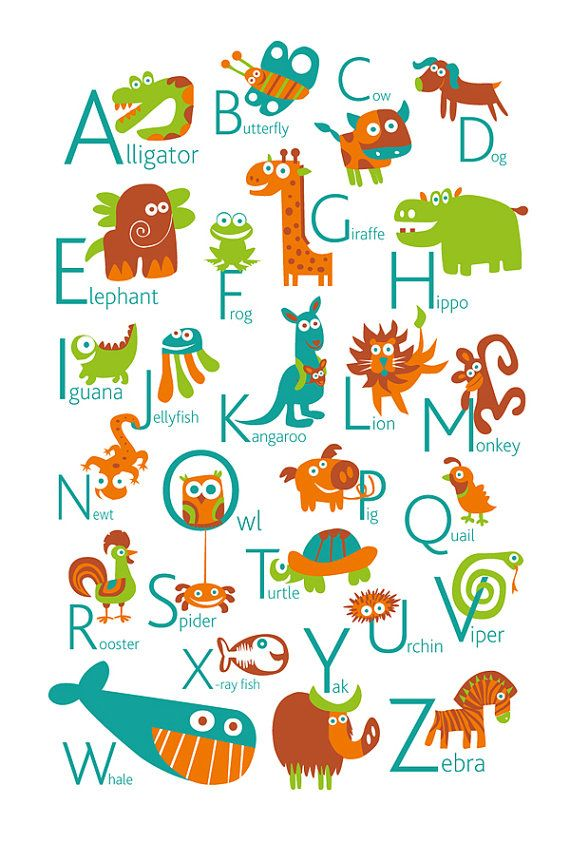 ENGLISH Alphabet Poster with animals from A to Z, BIG ...
