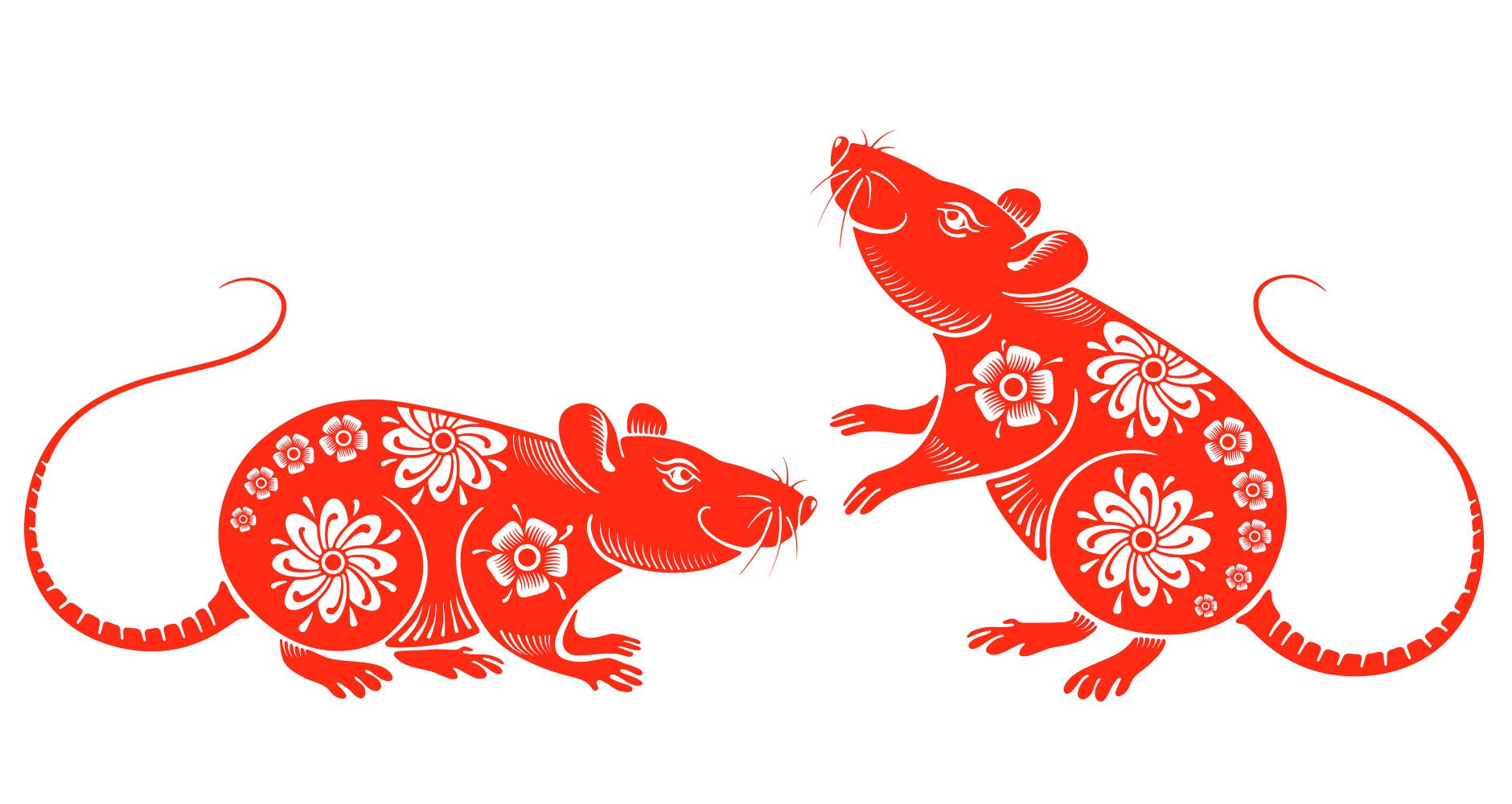 Chinese new year the year of the rattraditions and