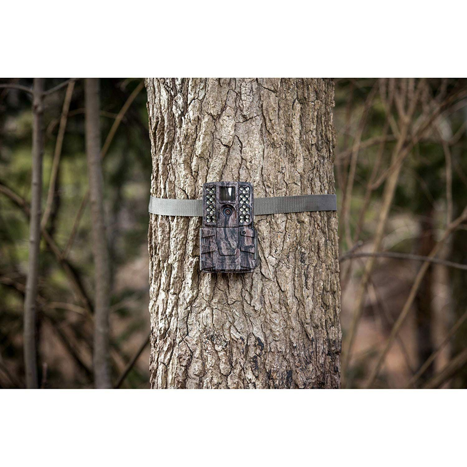 These Moultrie Game Camera Reviews Discuss The A To Z About The Trail Camera Click On To It And Get The Details About Game Cameras Camera Reviews Trail Camera