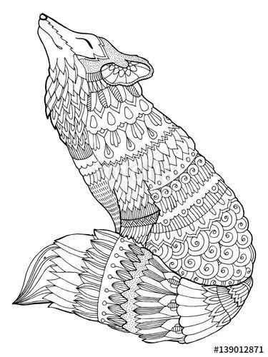 fox coloring book illustration designedalexander