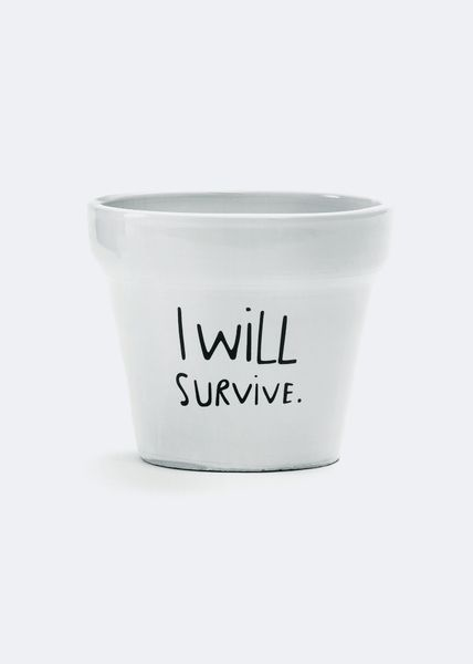 I will survive plant pot from 24Dientes by DaWanda.com