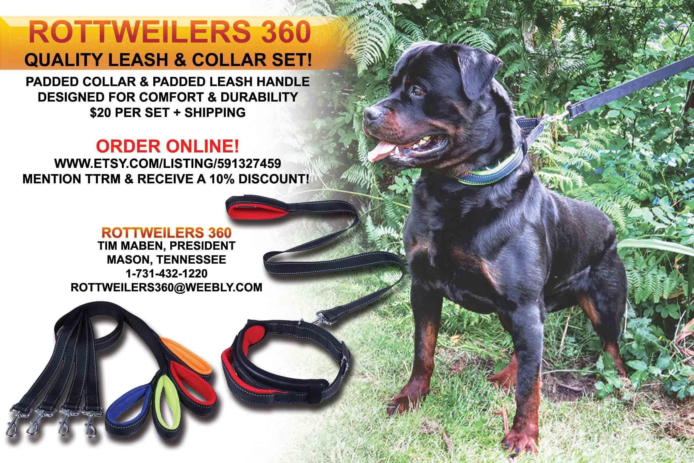 Rottweilers 360 Tim Maben President Mason Tennessee 1 731 432