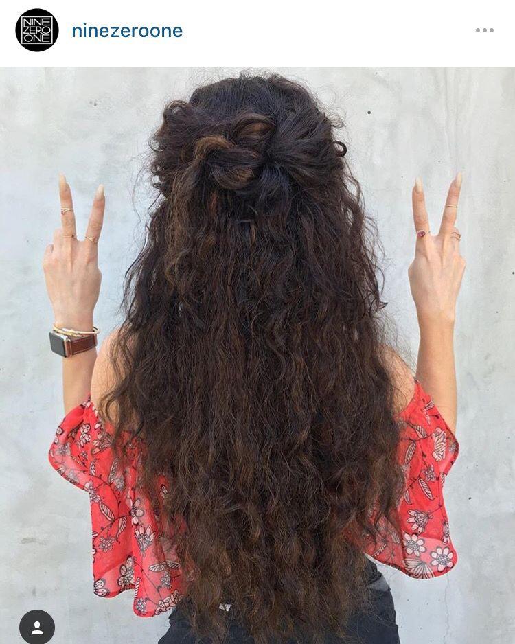 Vanessa coachella hair