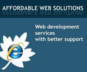 Http Arinfotech Co In Build Applications That Aim At Fulfilling The Client S End Ob Small Business Online Marketing Website Development
