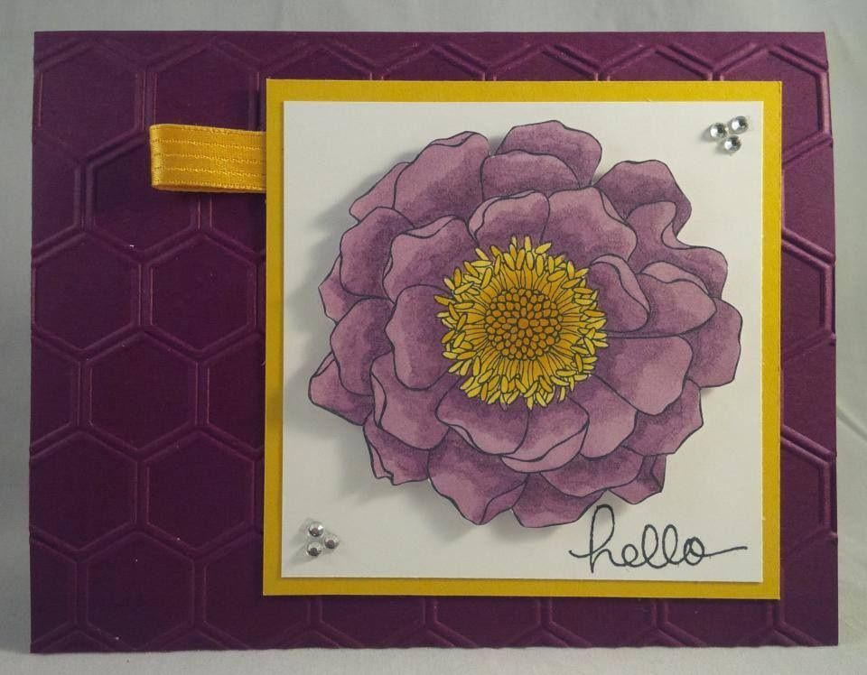 Stampin up card by Gloria Kremer, Facebook - girlfriend originals. Blended Bloom coloured with Blendabilities rich razzleberry. 2014-2015 new catalog.