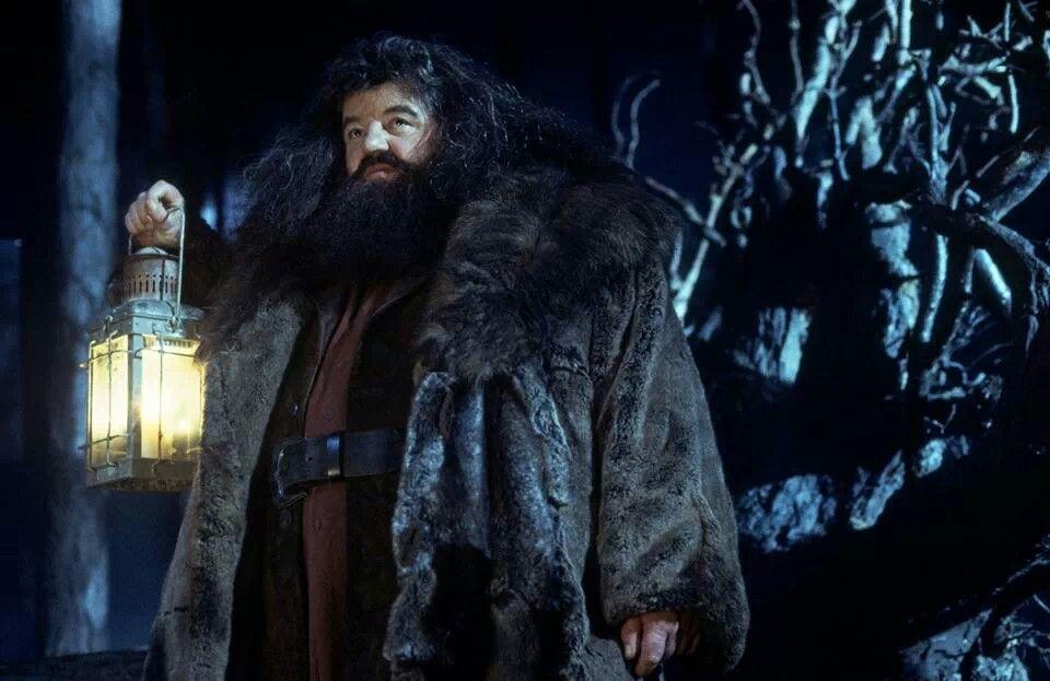 Hagrid | Harry Potter Fun | Pinterest
