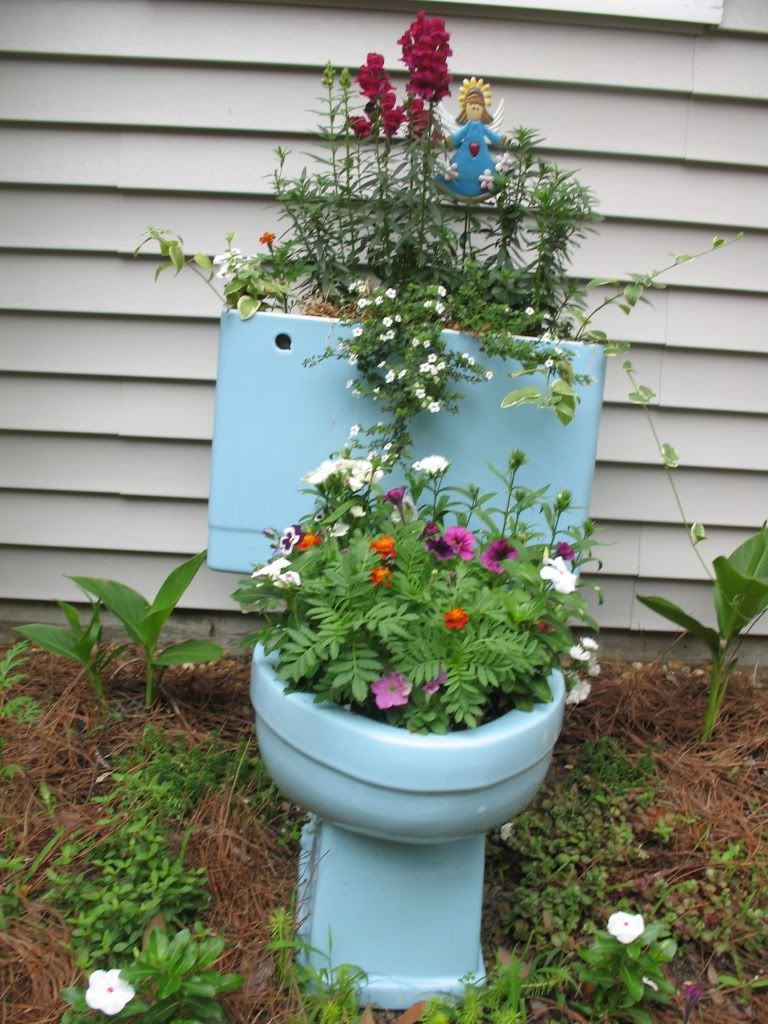 A great idea for the old toilet