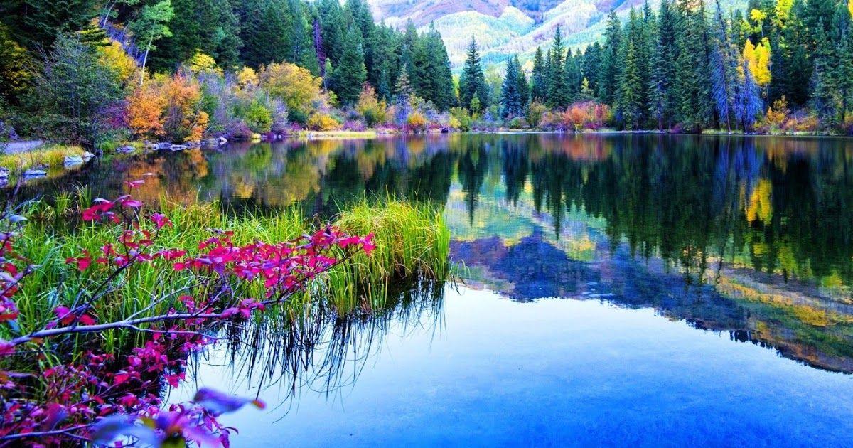 Gambar Gambar Pemandangan Alam Indah Pemandangan Fotografi Alam Foto Alam