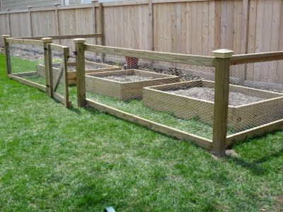 Simple Fence. Just A Few Posts, Use 2x4s Or Similar To Connect Posts, Then  Staple Chicken Wire Into The Frame This Creates. From Designing Domesticity