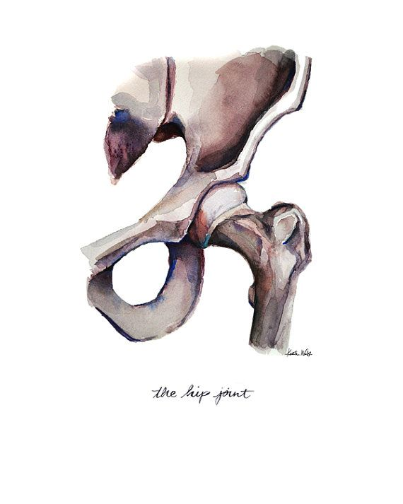 Articulación de la cadera imprimir acuarela acuarela por LyonRoad ...