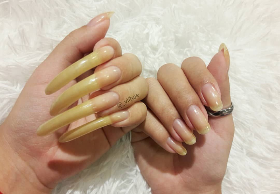 Vitoria Sur Instagram So That S How They Are Now I M Crazy And I Like It Curved Nails Long Natural Nails Long Nails