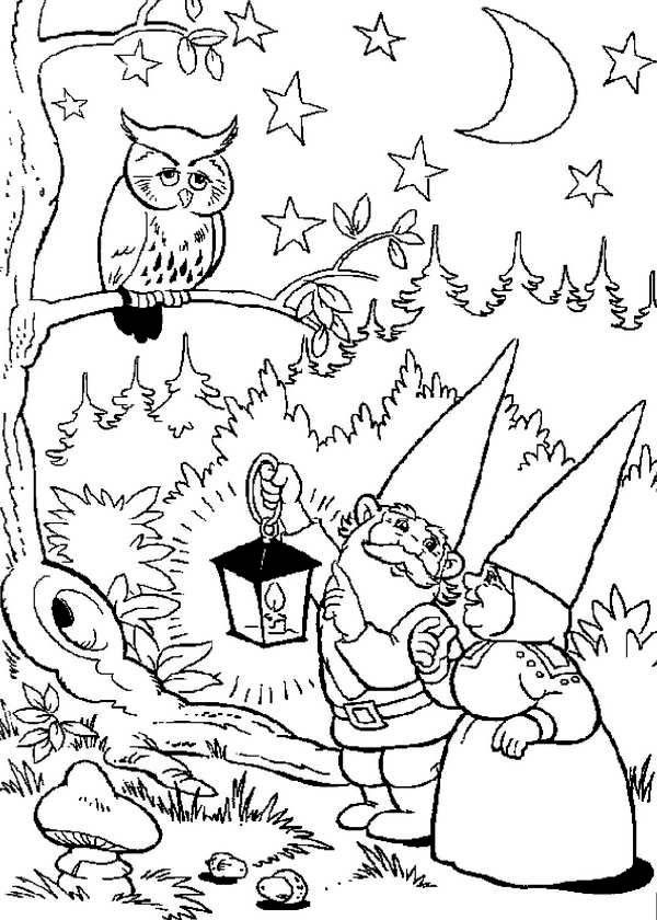 david the gnome david the gnome and lisa found an owl up on tree