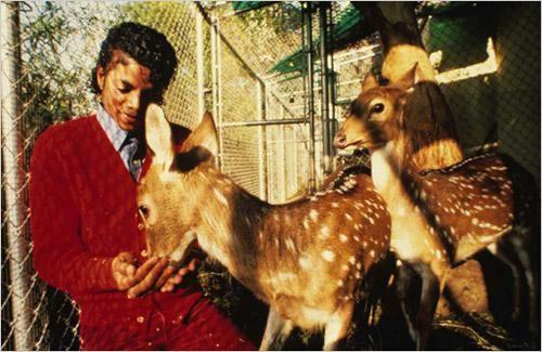 Michael Jackson With Pet Deers Michael Jackson Thriller Michael