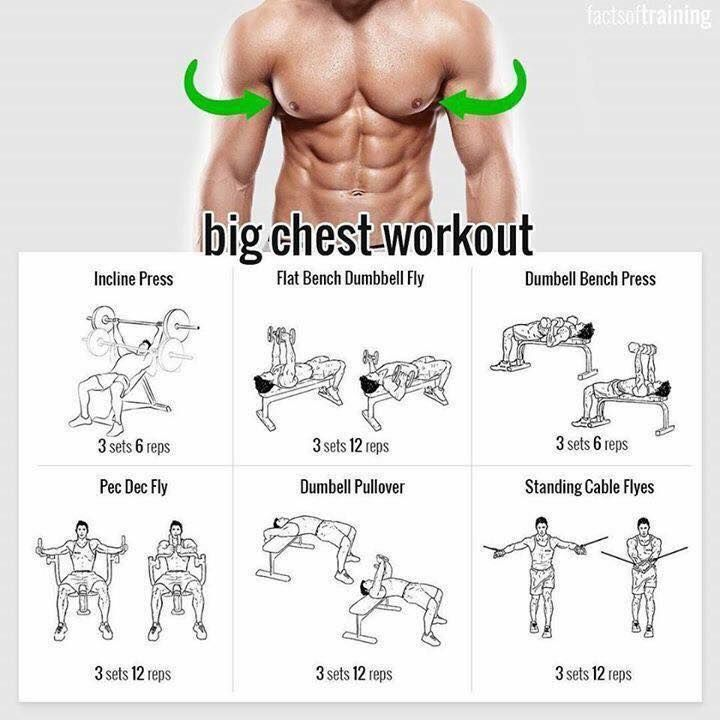 Big Chest Workout!