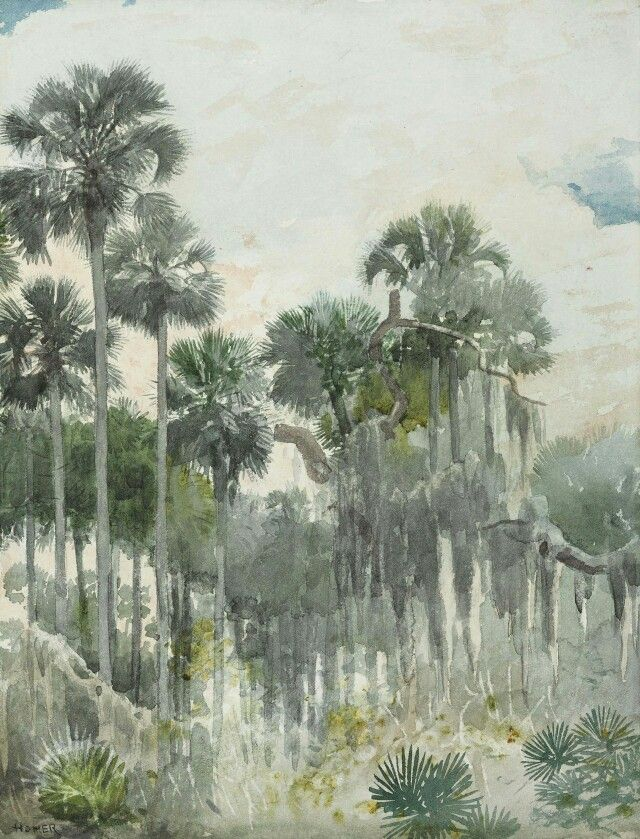 Winslow Homer,  Florida Jungle, 1886.
