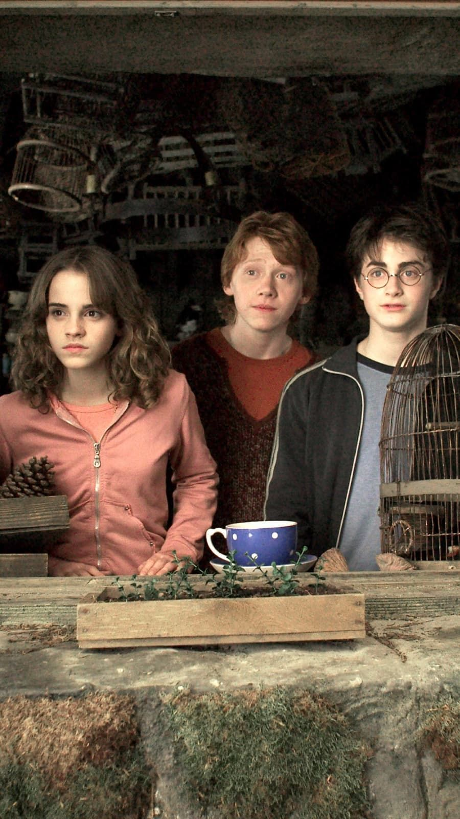 Emma Watson Rupert Grint And Daniel Radcliffe In Harry Potter And The Prisoner Of Azkaban Daniel Radcliffe Harry Potter Harry Potter Images Harry Potter Ron