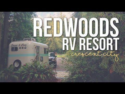 Experience The Thrill Of Rv Tent And Cabin Camping Under A Canopy Of Towering Redwoods In Our Premier Redwood Na Crescent City California Travel Vlog Rv Parks
