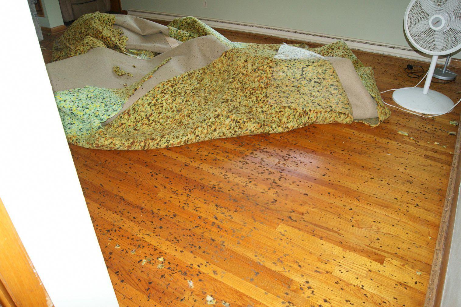 Carpet runners home hardware carpetrunnergumtreeperth