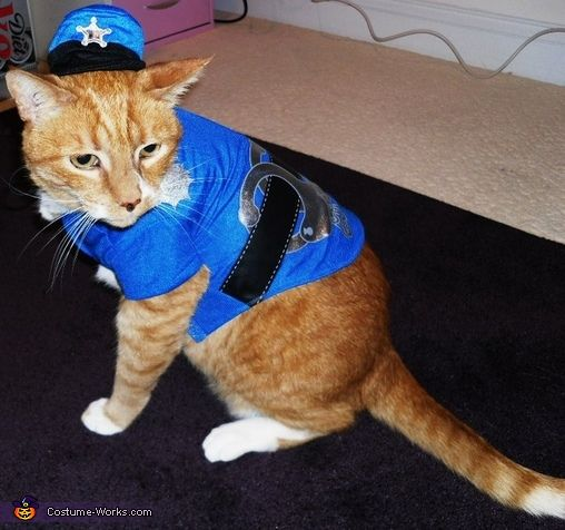 cat cop halloween costume contest at costume dog halloween costumes cats dog. Black Bedroom Furniture Sets. Home Design Ideas
